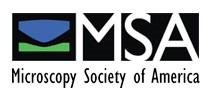 Microscopy Society of America